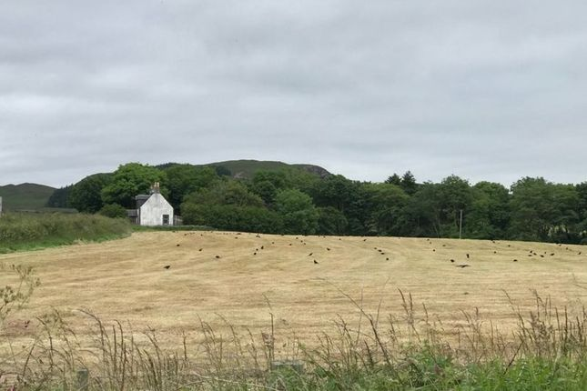 Thumbnail Property for sale in Campbeltown