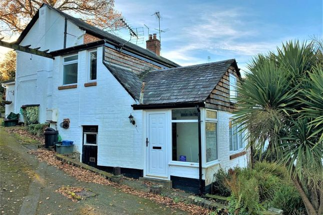 Thumbnail Semi-detached house to rent in Sidcliffe, Sidmouth, Devon