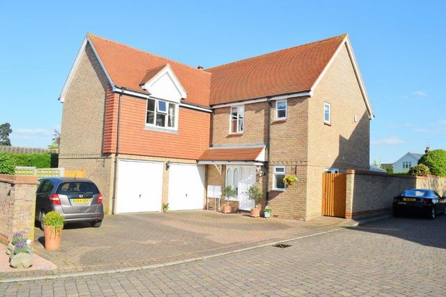 Thumbnail Detached house for sale in Whitehead Close, Writtle
