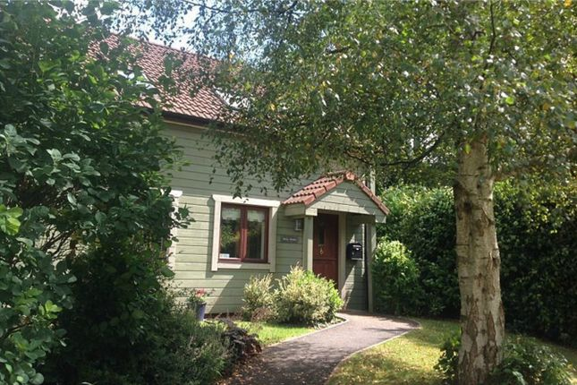 Thumbnail Detached house for sale in Mill Meadow, Kingston St Mary, Somerset