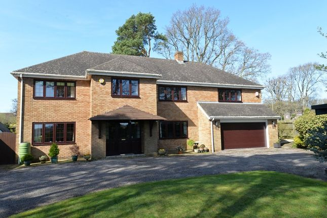 Thumbnail Detached house for sale in Brockhills Lane, New Milton