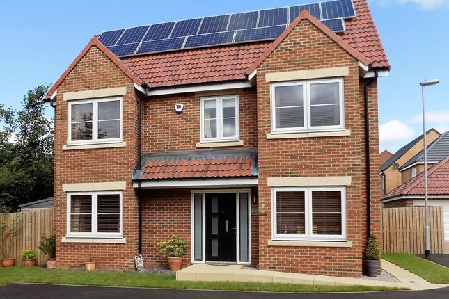 Thumbnail Detached house for sale in Rushyford Drive, Chilton, Co Durham