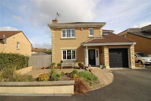 Thumbnail Detached house for sale in Meadow Brook, Roundswell, Barnstaple