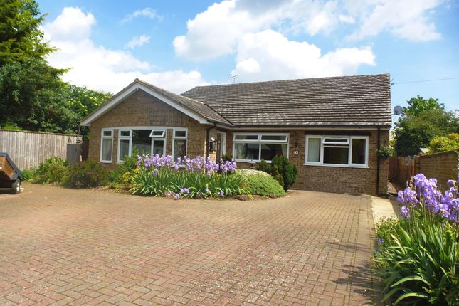 Thumbnail Detached bungalow for sale in Rosedene Drive, March