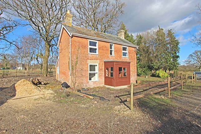 Thumbnail Detached house for sale in Mill Lane, Burley, Ringwood