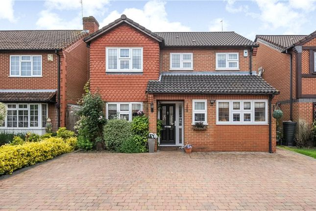 Thumbnail Detached house to rent in Earlsfield, Holyport, Maidenhead