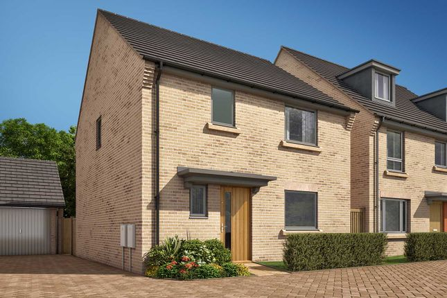 """Terraced house for sale in """"The Elliot A"""" at Heron Road, Northstowe, Cambridge"""