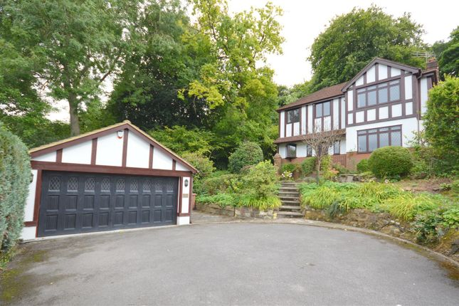Thumbnail Detached house to rent in Drive Spur, Kingswood, Tadworth