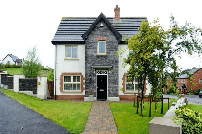 Thumbnail Detached house for sale in Coopers Mill Avenue, Dundonald, Belfast