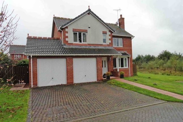 Thumbnail Detached house for sale in Dalscone Avenue, Dumfries