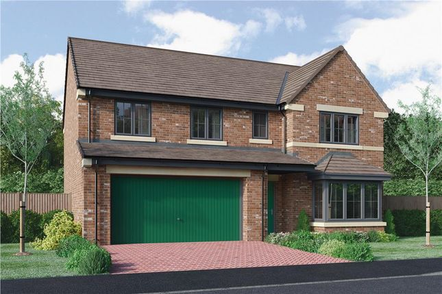 "Thumbnail 5 bed detached house for sale in ""The Buttermere Alternative"" at Roundhill Road, Hurworth, Darlington"