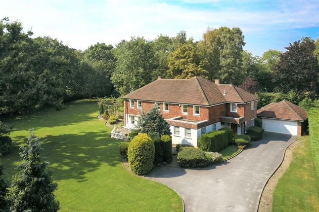Thumbnail Detached house for sale in Wantz Road, Margaretting, Ingatestone