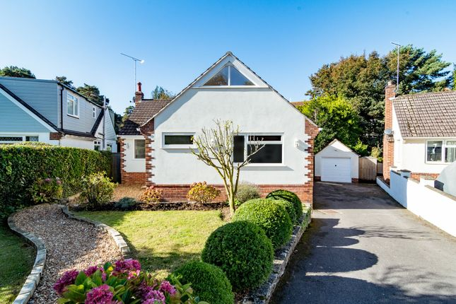 Thumbnail Detached bungalow for sale in Knole Gardens, Bournemouth, Dorset