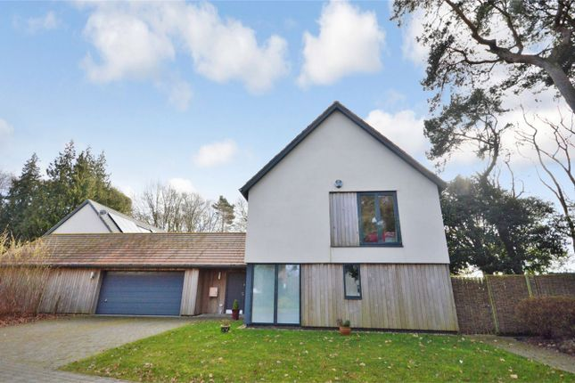Thumbnail Detached house for sale in Littlewood, Drayton, Norwich