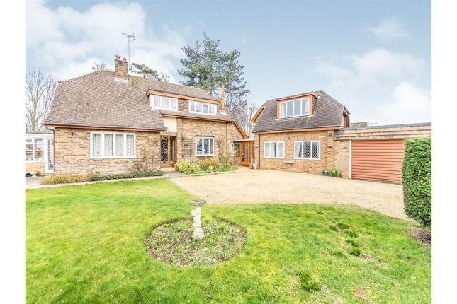Thumbnail Property to rent in Carlby Road, Greatford, Stamford