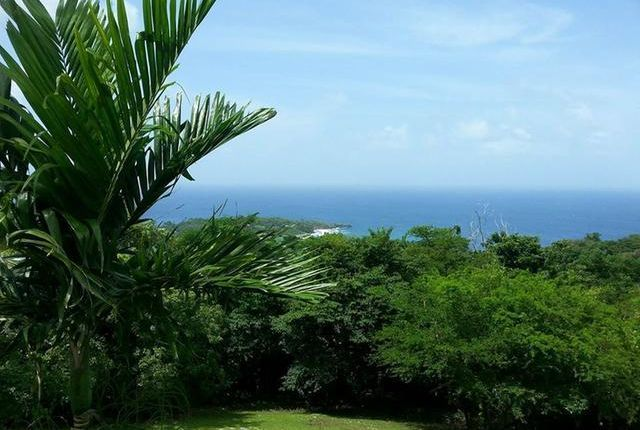 Land for sale in Fairy Hill, Portland, Jamaica