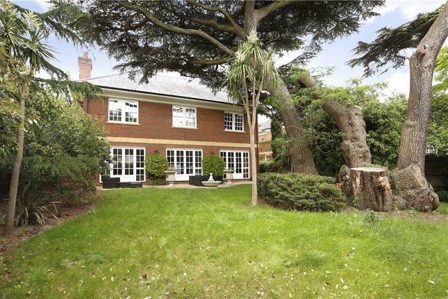 Thumbnail Detached house for sale in Prospect Place, Wimbledon