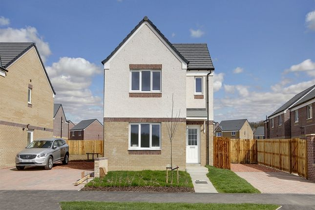 "Thumbnail Detached house for sale in ""The Elgin"" at Dunlop Road, Stewarton, Kilmarnock"