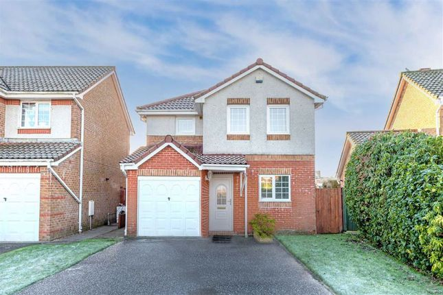 Thumbnail Detached house for sale in Stewart Avenue, Carron, Falkirk