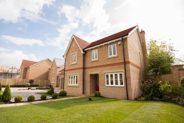 Thumbnail Detached house for sale in The Kingfisher, Plot 1, Lydgate Fields, Fairfield