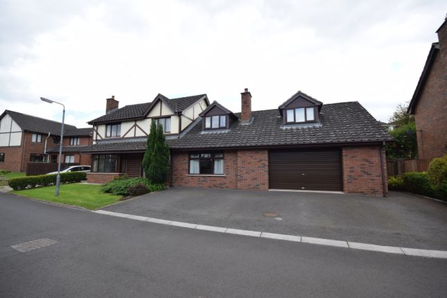 Thumbnail Detached house for sale in Shelling Park, Lisburn