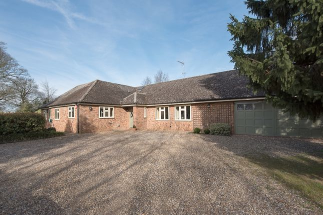 Thumbnail Bungalow to rent in Veilliey, Mackerye End, Harpenden, Hertfordshire