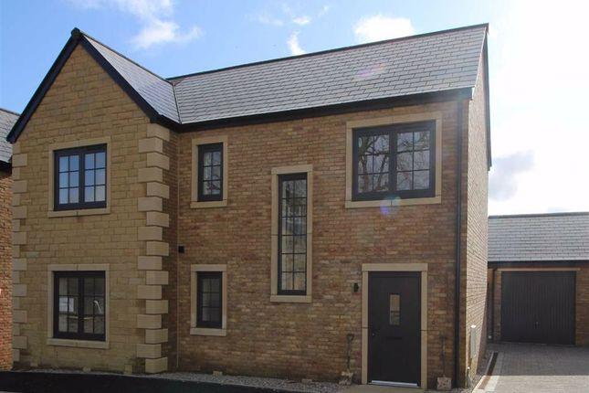 Thumbnail Detached house for sale in Spelsbury, Fellside Development, Chipping