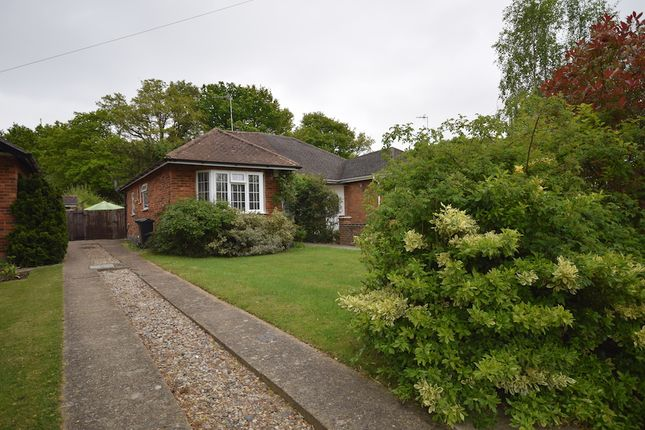 Thumbnail Bungalow for sale in Castle Drive, Horley