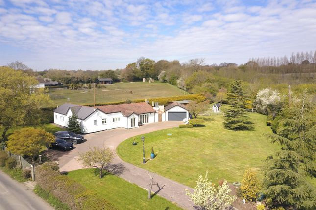 Thumbnail Detached bungalow for sale in Lower Stock Road, West Hanningfield, Chelmsford