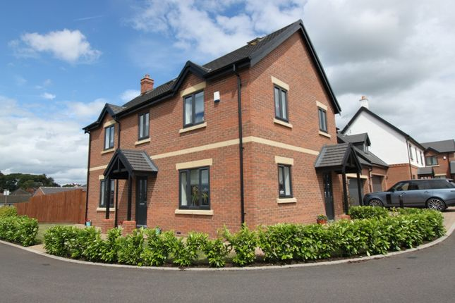Thumbnail Detached house for sale in Nursery Hollow, Ilkeston