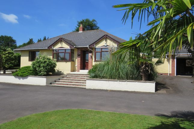 Thumbnail Bungalow to rent in Dinedor, Hereford