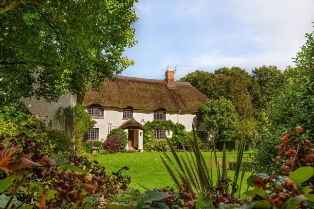 Thumbnail Property for sale in Wood Barton Farm, Kentisbeare, Cullompton, Devon