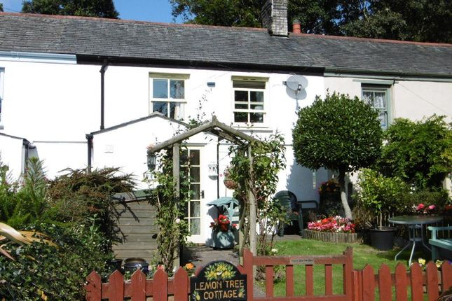 Thumbnail Cottage to rent in Church Road, Charlestown, St. Austell