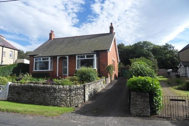 Thumbnail Bungalow to rent in Allendale, Hexham