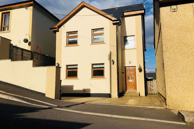 Thumbnail Detached house for sale in Somerset Street, Brynmawr, Ebbw Vale