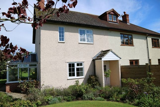 Thumbnail Semi-detached house for sale in Stringston, Bridgwater
