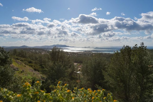 Land for sale in Bandol, Provence Coast (Cassis To Cavalaire), Provence - Var