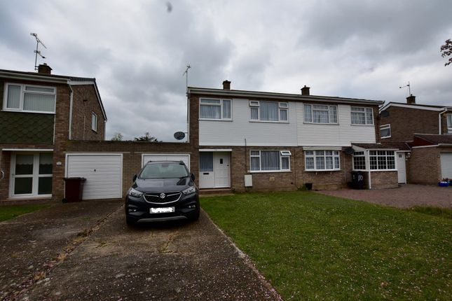 Thumbnail Semi-detached house to rent in Flatford Drive, Clacton-On-Sea