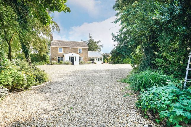 Thumbnail Detached house for sale in Lotts Bridge, Threeholes, Wisbech