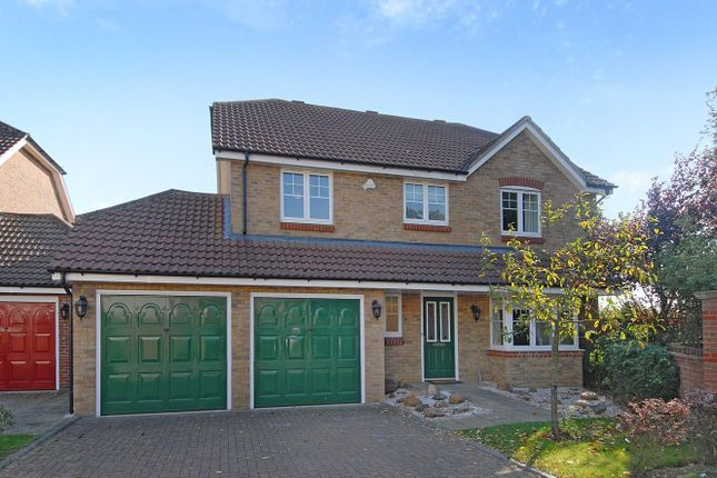 Thumbnail Detached house to rent in Coopers Gate, Colney Heath, St.Albans