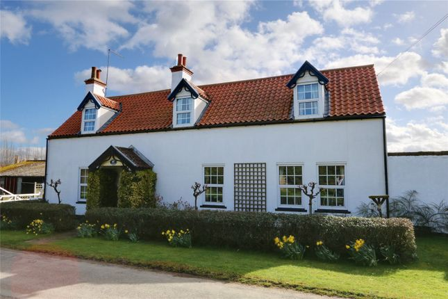 Thumbnail Detached house for sale in Bentley, Beverley, East Yorkshire
