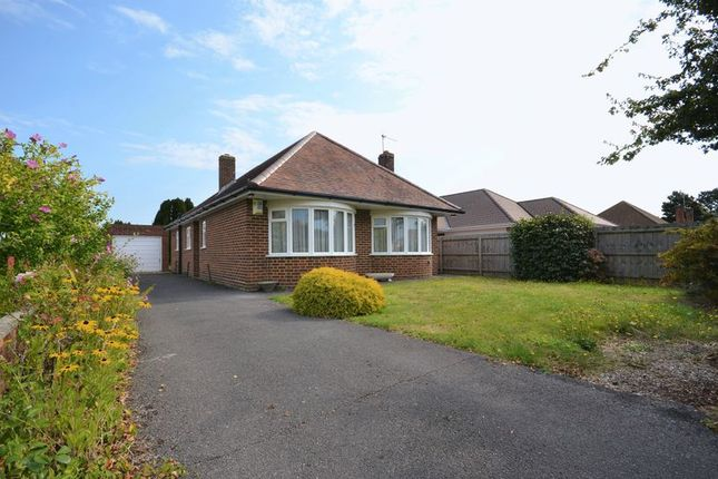 Thumbnail Bungalow for sale in Craigmoor Avenue, Bournemouth
