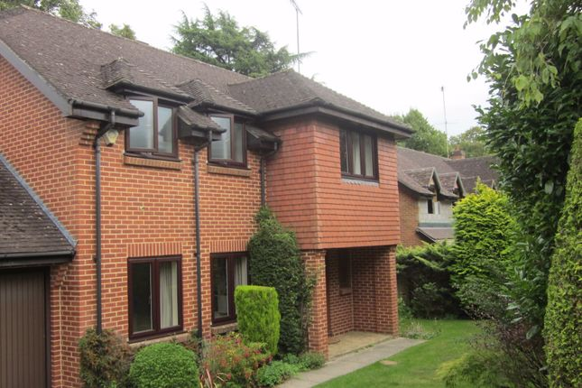 Thumbnail Property for sale in Holmes Close, Ascot