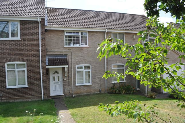 Thumbnail Terraced house for sale in Heatherhayes, Ipswich