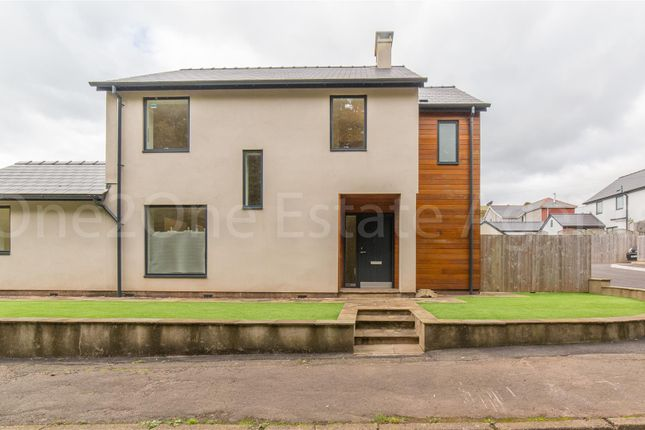 Thumbnail Detached house for sale in Lodge Wood, New Inn, Pontypool