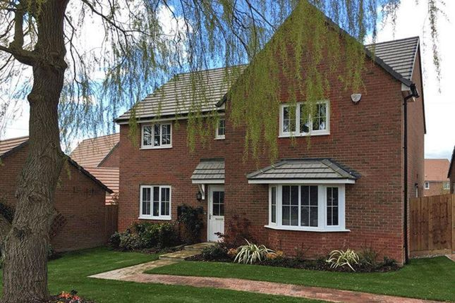 "Thumbnail Detached house for sale in ""Knightsbridge"" at Stanley Close, Corby"