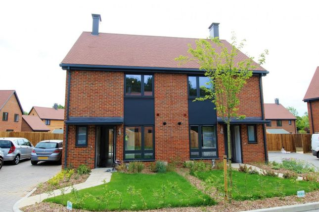 Thumbnail Semi-detached house for sale in Dunsfold, Guildford