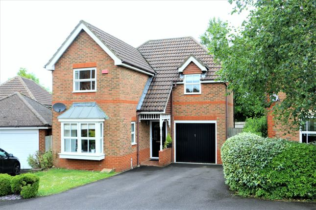 Thumbnail Detached house for sale in Redwing Road, Basingstoke