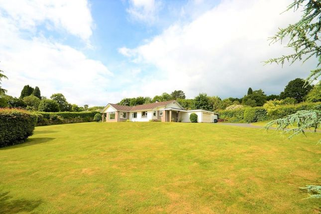 Thumbnail Detached bungalow for sale in Colehayes, Bovey Tracey, Newton Abbot, Devon