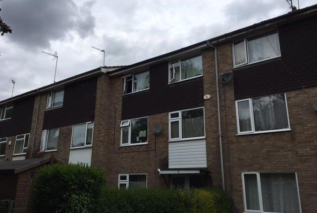 Thumbnail Property to rent in Comet Road, Hatfield
